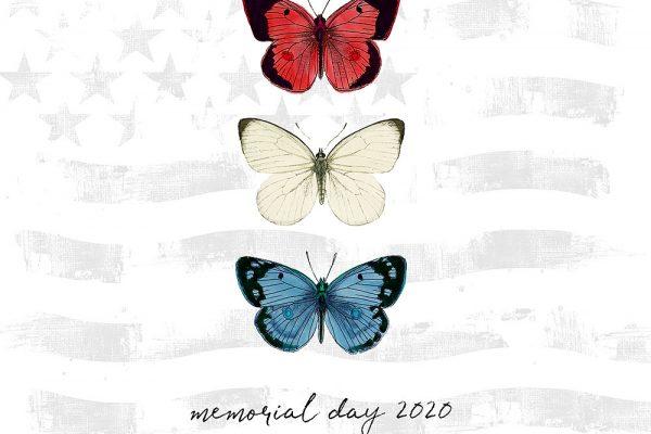 Katie Pertiet Americana Butterflies