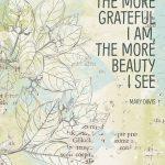 Katie Pertiet Designs 30 Days of Gratitude