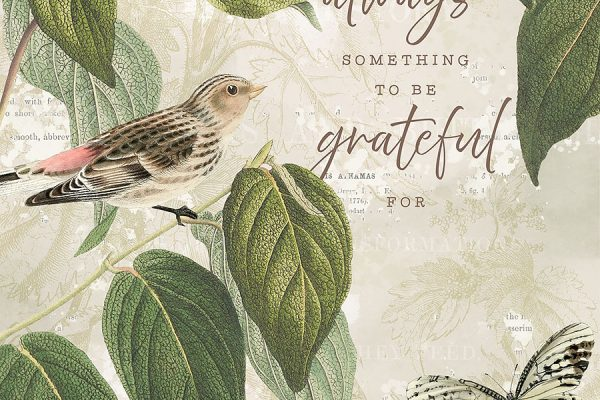 Katie Pertiet 30 Days of Gratitude Cards