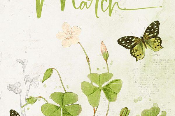 Katie Pertiet Designs Free Download
